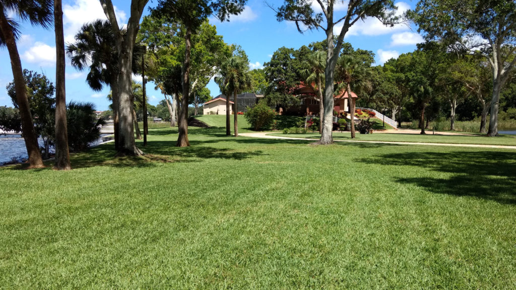 Lawn Spraying Services