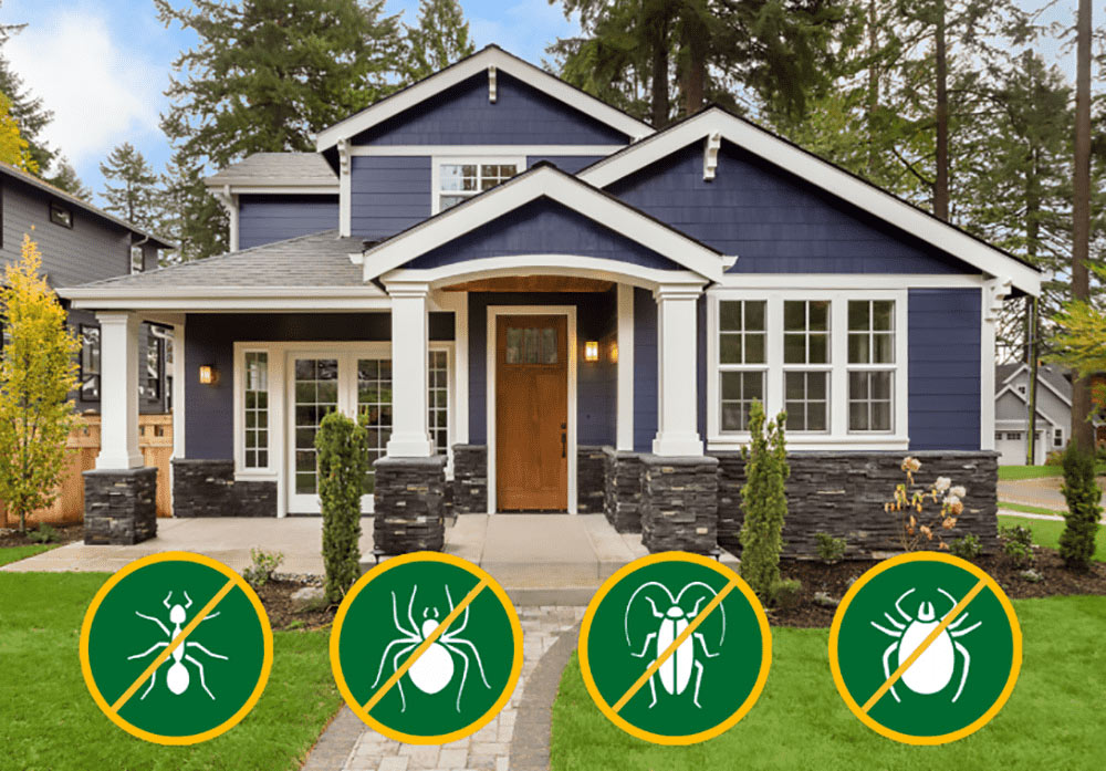 Perimeter Pest Control Services