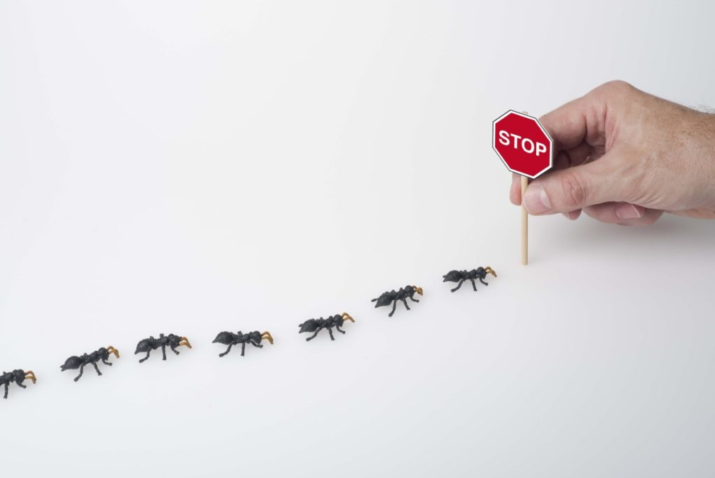 stop pests from entering home
